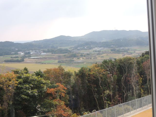 Haranotsujiganka