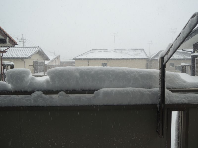 Snow020814